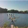 Tehnici pescuit la crap