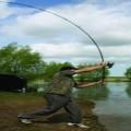 Cum alegem montura pentru pescuit ?