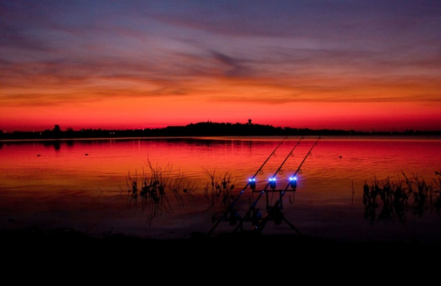 Pescuitul la crap toamna