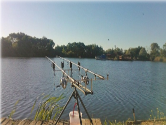 pescuitul la crap