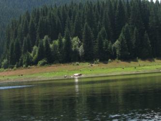 Lacul Belis