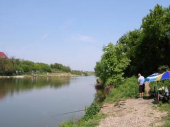 balta pescuit lilieci