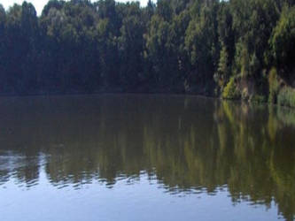 Balta pescuit Branesti